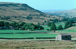 Farm in the Eden Valley in Summer